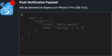 Push notification options